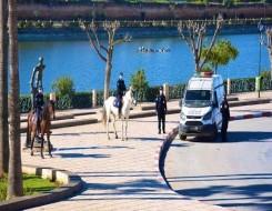 المغرب اليوم - الدرك الملكي يلقي القبض علي عصابة إجرامية خطيرة في تارودانت