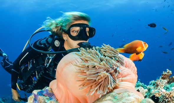 علماء يكتشفون سر القضاء على الفيروسات والبكتيريا فى أعماق المحيط