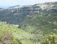 المغرب اليوم - مزارعون إسرائيليون يخترقون الجدار الحدودي مع لبنان