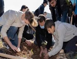المغرب اليوم - الملقحات تساهم في الحفاظ على تنوع النباتات المزهرة