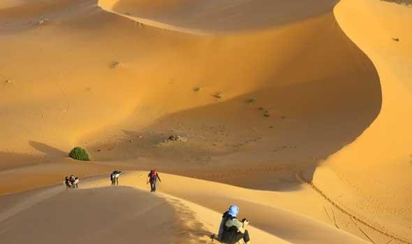 المغرب اليوم - السعودية تجدد التأكيد على دعم قضية الصحراء المغربية