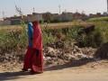 المغرب اليوم - عودة أكثر من 12 ألف عاملة مغربية إلى حقول هويلفا في ديسمبر المقبل