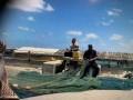 المغرب اليوم - اصطياد سمكة