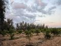 المغرب اليوم - شراكة جديدة تجمع المغرب وإسرائيل