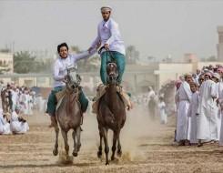 المغرب اليوم - تتويج 24 حصانا من أجود الخيول المغربية في نهاية الملتقى الوطني للخيول العربية البربرية