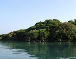 المغرب اليوم - جزيرة النور في الإمارات تجمع بين سِحر الطبيعة والفن والترفيه