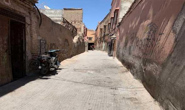 جهة مراكش تتصدر المناطق الأكثر تضررا من لسعات العقارب