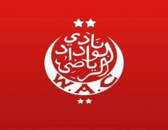 المغرب اليوم - قلوب الصنوبر