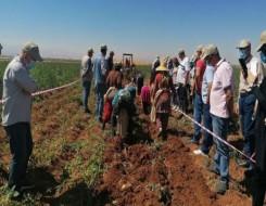 المغرب اليوم - العنصر ينهي ولايته بإقصاء تازة من مشاريع النهوض بقطاع الصناعات الفلاحية