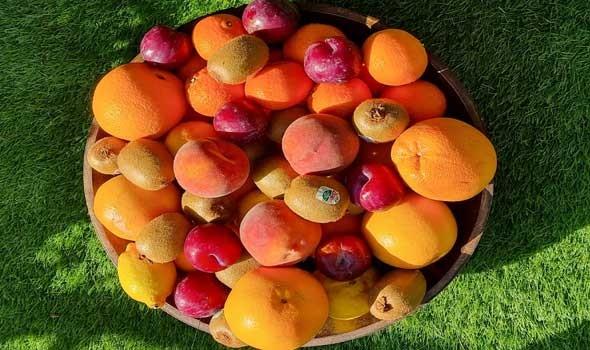 المغرب يعلن عن إلغاء فعاليات الملتقى الوطني للتفاح
